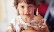 Lemmiklooma surm: kas lapsele tuleks kaotuse kohta tõtt rääkida?