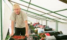 Välismaa maasikakorjajale ei tohi maksta miinimumpalka – normaalne?