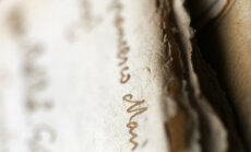 Мамихлапинатапай — самое трудное для перевода слово