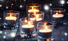 Täna on kolmekuningapäev: tähista jõuluaja lõppemist kuuse välja viimisega