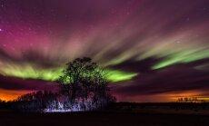 В погоне за северным сиянием: где оно видно лучше всего?