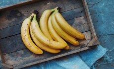 Ränk banaanikatk kollitab puuviljasõpru