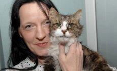Uskumatu lugu: täieliku ime läbi sai naine 14 aastat tagasi kadunud kassiga taas kokku