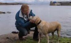 Südamlik VIDEO koerast, kelle erilisest sõbrast teised koerad ainult unistaksid