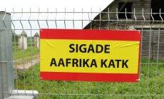 Põltsamaa valla seafarmis tuvastati sigade Aafrika katk