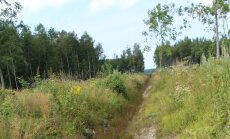 OÜ Karo Mets eeskujulikult hooldatud kuivenduskraav.