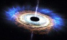 VIDEO: vaata, kuidas must auk tähe puruks rebib