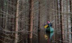 Sellised on Eesti ja maailma ilusaimad kohad, kus mobiililevile ei saa loota