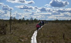 Proovime matkaradasid: Järva-Madiselt läbi Kodru raba Vargamäele