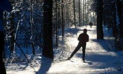Rahvusvaheline lumepäev Järve terviserajal