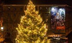 ФОТО: Самая высокая рождественская елка столицы расположена на площади Компасси