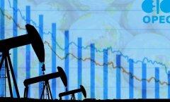 OPEC tõmbab naftatootmisele piduri peale
