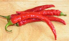 Tšillipipraga terveks ja saledaks: 10 asja, mida see punane kaun su organismis korraldab