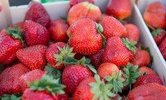 Maasika hinnad keskturul 2014