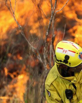 DELFI AUSTRAALIAS I MM-ralli viimane etapp jääb metsapõlengute tõttu ära, olukord muutus ohtlikuks