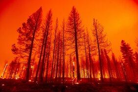 Põhja-Ameerika võitleb üle 700 ulatuslikuma põlenguga, mõni neist suurem kui Los Angeles. Kliimakriisi tõttu kimbutavad taolised katastroofid piirkonda tulevikus aina sagedamini.