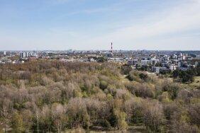 Astangu-Mäeküla mets on haruldane roheluse oaas Tallinna servas.
