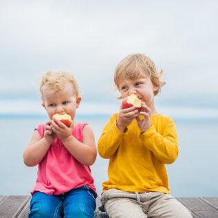 Laste tervislik toitumine: 10 kuldreeglit