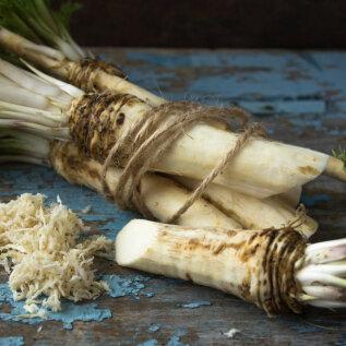 Sügis on juurikate korjamise aeg! 5 maitsvat juurikat, mida salati, supi või koogi sisse panna!
