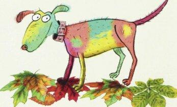 Ilusat värvideküllast sügist koos kirju koeraga!