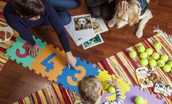 Koerad aitavad arenguhäiretega laste sotsiaalseid ja emotsionaalseid oskusi arendada