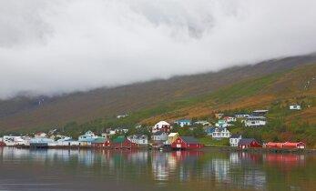 Eesti ametnikud kibelesid Islandile komandeeringusse