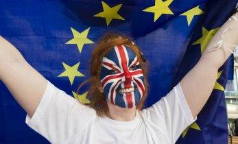 Айн Тоотс: Brexit как руководство к действию