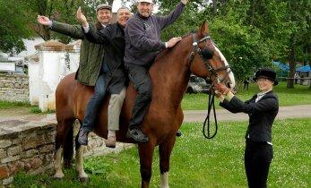 Hobustele on Eestimaal tööd rohkem kui küll