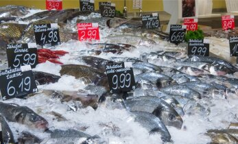Обзор цен: молочные продукты за год подешевели, мясо и рыба — наоборот