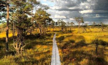 Laupäeval tuleb tasuta Matkamess, mis tutvustab kümneid matku, elamuskeskusi ja seiklustegevusi Eestis