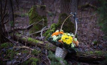 100 SEKUNDIT: 14aastase Narva koolitüdruku tappis tuttav noormees, Ühtne Venemaa lõi riigiduumas saadud kohtade arvus iseenda rekordi