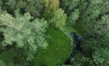 KAAMERAGA MAAL: Metsadesse peitunud kraatrid – on need taevast päritolu või ainult müüt?