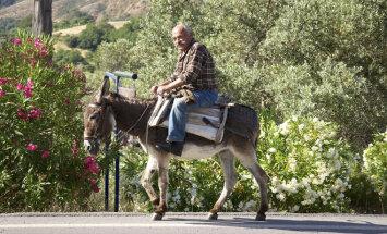 Ученые выяснили, почему на Крите так много долгожителей
