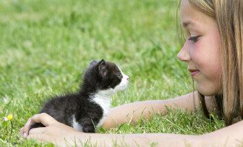 5 главных мифов об аллергии на животных