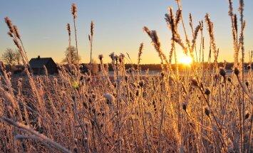 FOTOD: Külmaküla klõpsud ehk võrratud talvepildid Jõgevamaalt