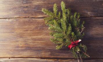 5 võimalust kuidas jõulupuud taaskasutada