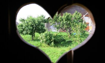 Sume augustikuu kutsub õue! Tee aiatöid südamega