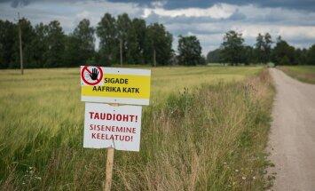 Baltimaade ja Poola veterinaarid: taudipiirangud võiksid olla paremini põhjendatud