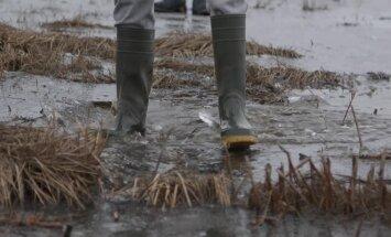 KAAMERAGA MAAL: Noorte õppetunnid looduses – kalade lahkamine, lämmatav lehk, märjad jalad