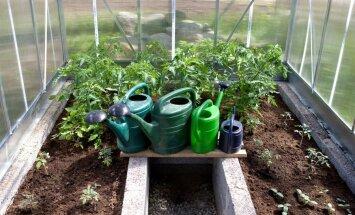 HÜVA NÕU: Kütteta kasvuhoone võiks veel tühi olla