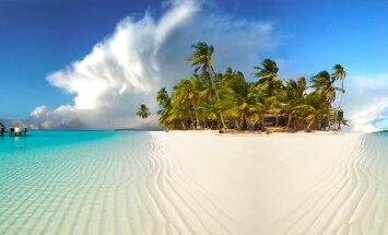 ВИДЕО против весеннего авитаминоза! Кого путешественники из Эстонии повстречали в водах у Мальдивских островов