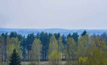 Viljandi lähistel on näha sinist vinet