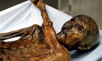 Vaseaja meestemood Alpides: jäämees Ötzil olid seljas vähemalt viie looma nahad