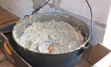 Teraviljapudrud: eestlaste vanemaid teraviljatoite on odrapuder