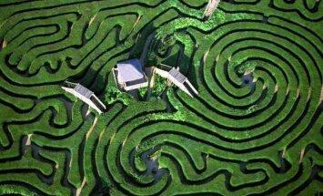 Найди выход: Самый большой в Испании хвойный лабиринт