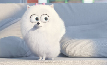 """ARVUSTUS: """"Lemmikloomade salajane elu"""" avab humoorikalt lemmikute siseelu"""