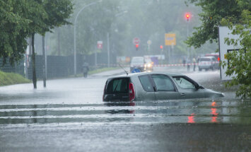 """Город-губка"": как Берлин реагирует на меняющийся климат"