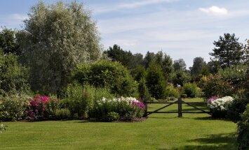 Terje Luige kodu ja aed