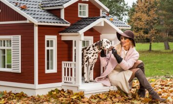 Eestlaste leiutatud nutikas koeravilla kogub investeerijate hulgas populaarsust