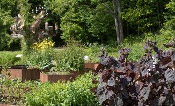 Botaanikaaia Meelte aed